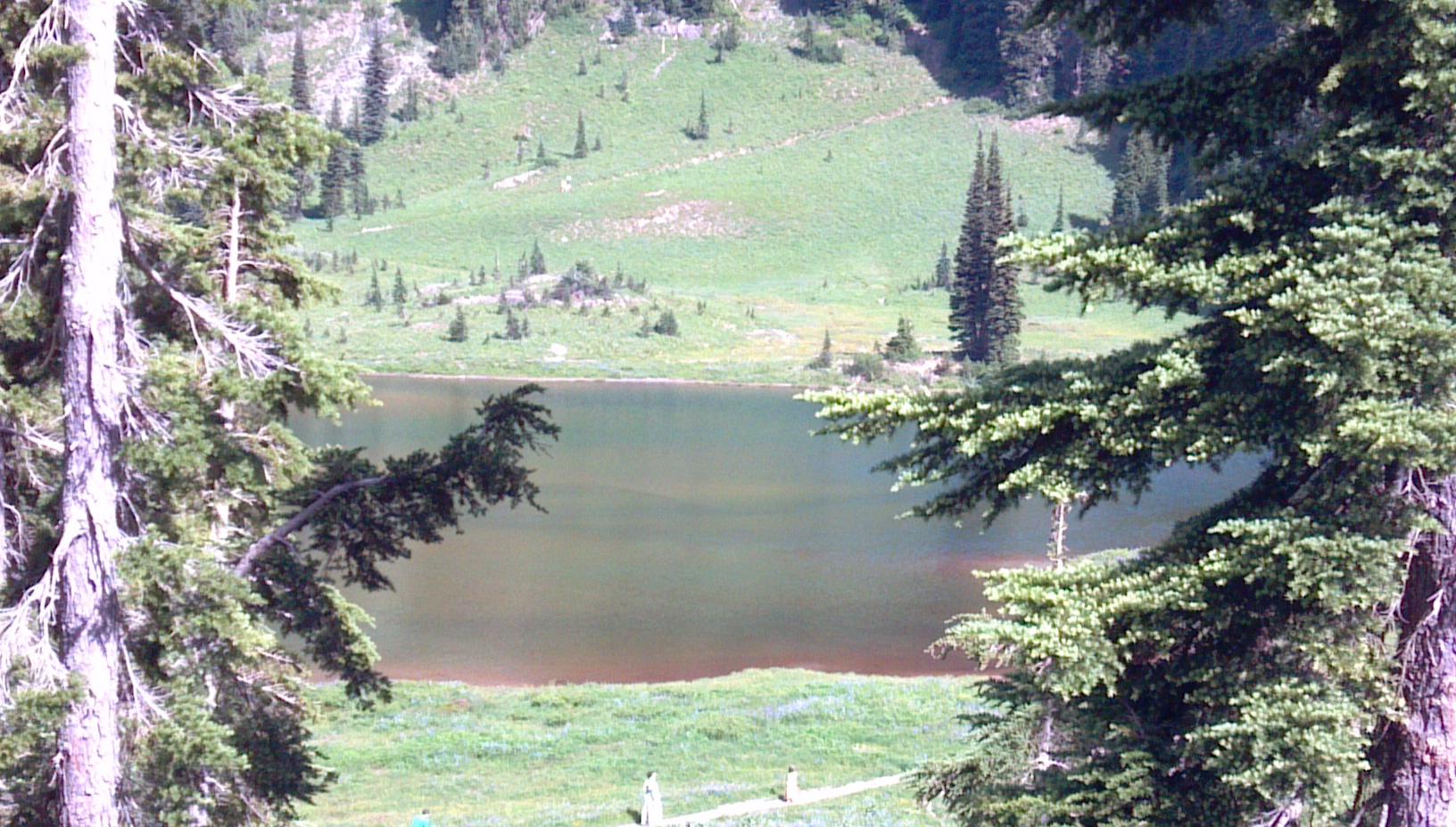Tipsoo Lake on Chinook Pass, Washington