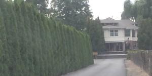 birchfield-manor-restaurant-and-bnb-1
