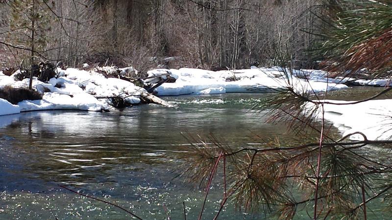 Entiat River March 2014