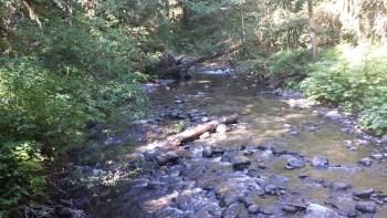 barnes-creek
